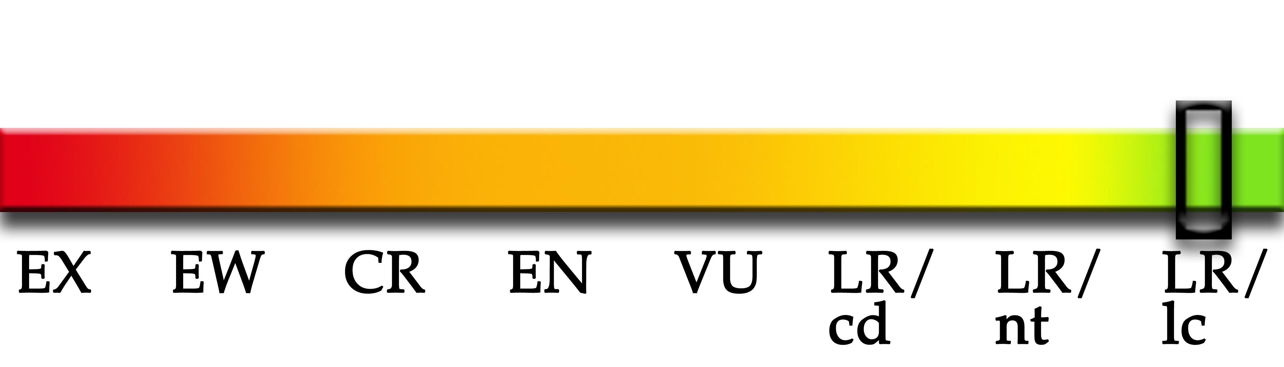 statusbar